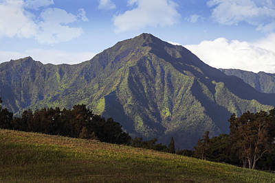 Photograph - Mountain In Kauai by Frank Wilson