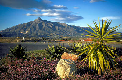 Mountain In Marbella Art Print by Carl Purcell