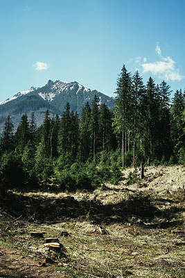 Spring Scenery Photograph - Mountain In The Distance by Pati Photography