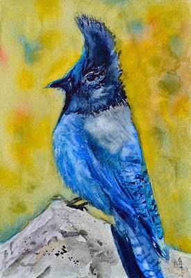 Bluejay Painting - Mountain Jay by Beverley Harper Tinsley