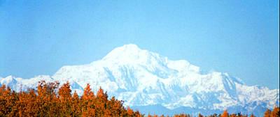 Art Print featuring the photograph Mountain by Judyann Matthews