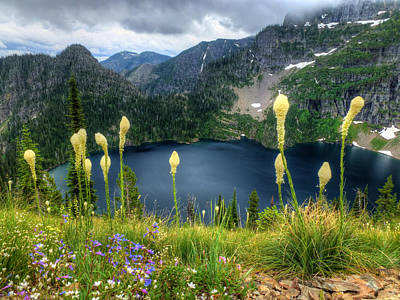 Photograph - Mountain Lake And Bear Grass by Robert Hosea