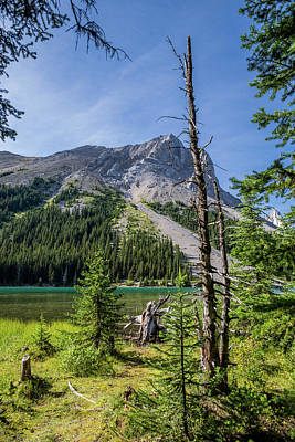 Photograph - Mountain Lake by Dwayne Schnell