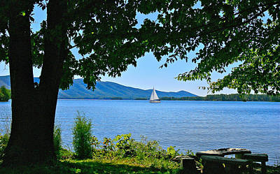 Photograph - Smith Mountain Lake Sailor by The American Shutterbug Society