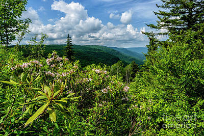 Print featuring the photograph Mountain Laurel And Ridges by Thomas R Fletcher