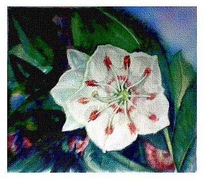 Wall Art - Painting - Mountain Laurel Blossom Closeup by Elle Smith Fagan