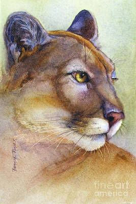 Puma Wall Art - Painting - Mountain Lion by Bonnie Rinier