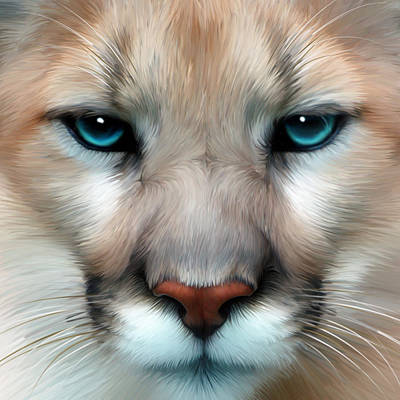 Cougar Digital Art - Mountain Lion by Julie L Hoddinott
