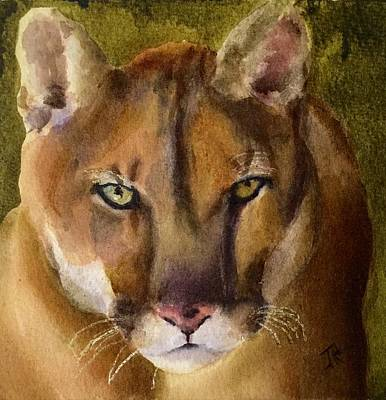 Painting - Mountain Lion by June Rollins