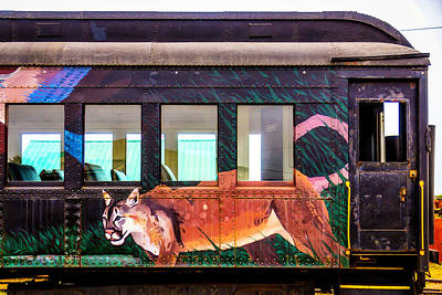 Mural Photograph - Mountain Lion On Passanger Car by Garry Gay