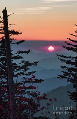 Photograph - Mountain Majesty by Shari Jardina