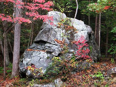 Sk Stones Photograph - Mountain Man Profile by Sabrina K Wheeler