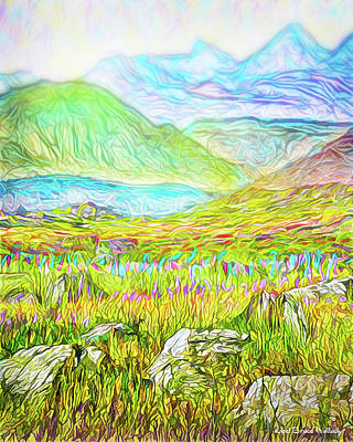 Digital Art - Mountain Meadow Boulders - Colorado Front Range by Joel Bruce Wallach