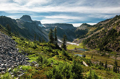 Photograph - Mountain Meadow by Crystal Hoeveler