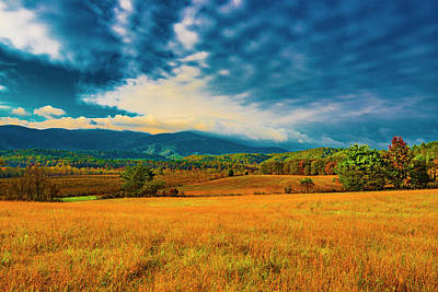 Photograph - Mountain Meadow I by Steven Ainsworth