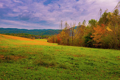 Photograph - Mountain Meadow II by Steven Ainsworth