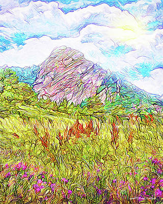 Digital Art - Mountain Meadow Wildflowers - Boulder Colorado Park by Joel Bruce Wallach