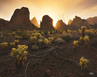 Peter James Nature Photograph - Mountain Minions by Peter Coskun