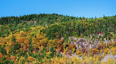 Photograph - Mountain Of Foliage by Roger Lewis