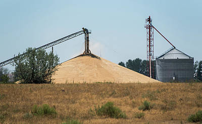 Photograph - Mountain Of Grain by Tom Cochran