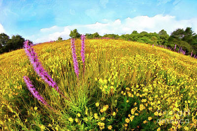 Art Print featuring the painting Mountain Of Summer Flowers In The Blue Ridge Ap by Dan Carmichael