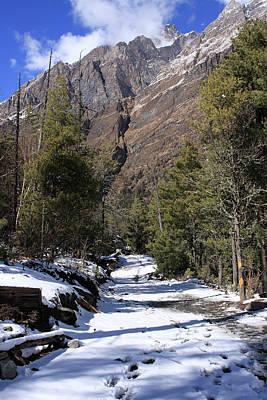 Photograph - Mountain Paradise  by Aidan Moran