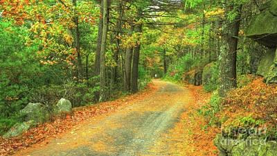 Photograph - Mountain Pass In Autumn by Scott Harrison
