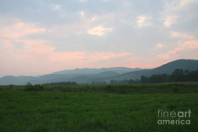 Photograph - Mountain Pasture by Annlynn Ward