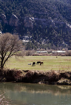 Print featuring the photograph Mountain Pasture Vertical by Lorraine Devon Wilke