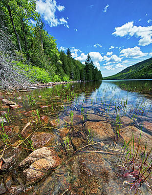 Photograph - Mountain Pond by David A Lane