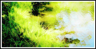 Digital Art - Mountain Pond With Spike Rush Plants by A Gurmankin