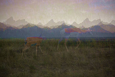 Digital Art - Mountain Pronghorns by Lamarre Labadie