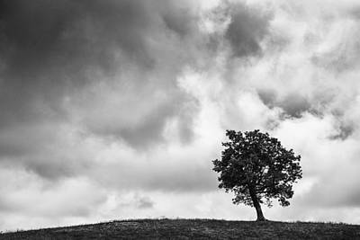 Tree On Hill - Doughton Park Blue Ridge Parkway Art Print