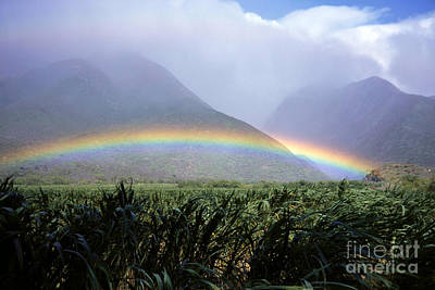 Photograph - Mountain Rainbow by Bill Schildge - Printscapes