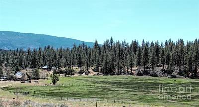 Photograph - Mountain Ranch by Jenny Revitz Soper