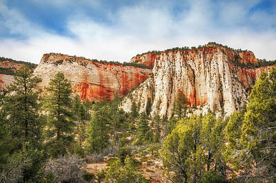 Photograph - Mountain Range In Zion National Park by Daniela Constantinescu
