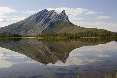 Mountain Reflection Art Print by Tim Grams