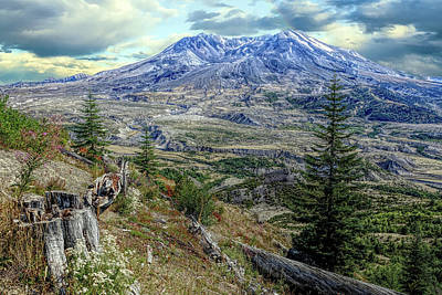 Photograph - Mountain Saint by Rick Lawler