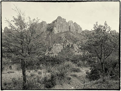 Photograph - Mountain Scene by Charles McKelroy