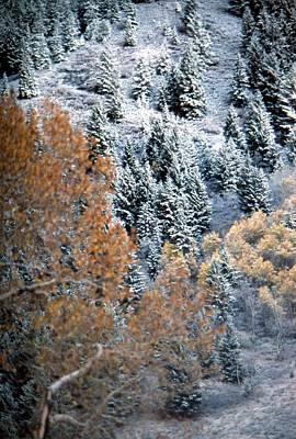 Photograph - Mountain Snows by John Schneider