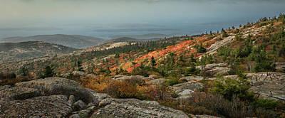 Photograph - Mountain Splendor by Jane Luxton