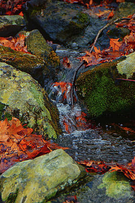 Mountain Spring On The At Art Print by Raymond Salani III