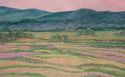 Drawing - Mountain Springtime by Dee Van Houten