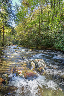 Photograph - Mountain Stream #3 by Tim Stanley