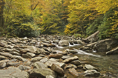 Mountain Stream  6058 Art Print by Michael Peychich