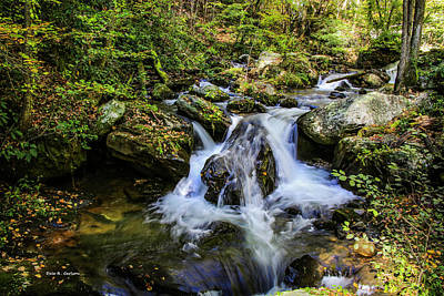 Photograph - Mountain Stream by Bluemoonistic Images