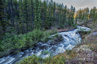 Photograph - Mountain Stream Canada by David Arment