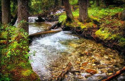 Photograph - Mountain Stream by Carolyn Derstine