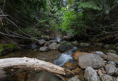 Photograph - Mountain Stream by Fran Riley