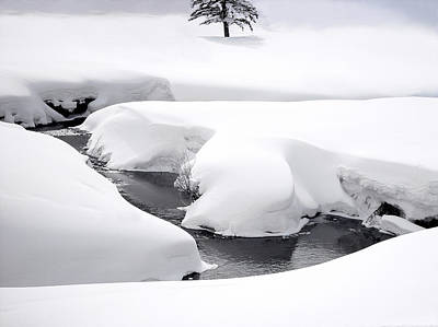 Photograph - Mountain Stream In Winter by Douglas Pulsipher